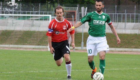 Einheit (rot) und Halle-Neustadt - welche Rolle können sie spielen? F: Wolf